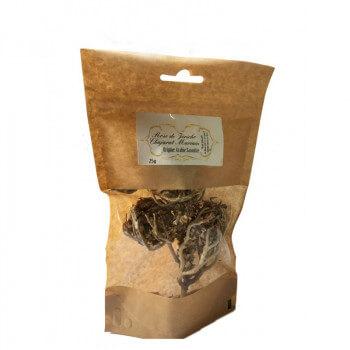 Chajarat Mariam / Rose de Jericho - Arabie Saoudite - 25 gr - Nigelle Source