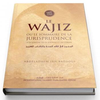 Le Wajiz ou le sommaire de la Jurisprudence - Edition I.I.P.H.