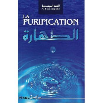 La Purification - Edition Pixel Graf